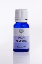 Pino Silvetsre - Pinus sylvestris
