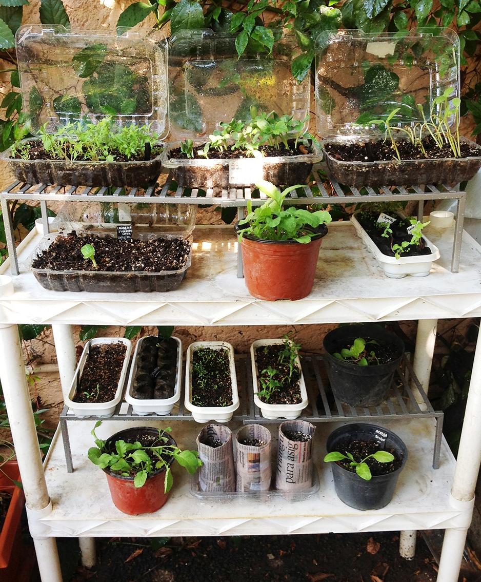 Productos de mantenimiento agro agricultura jardines - Tierra para semilleros ...